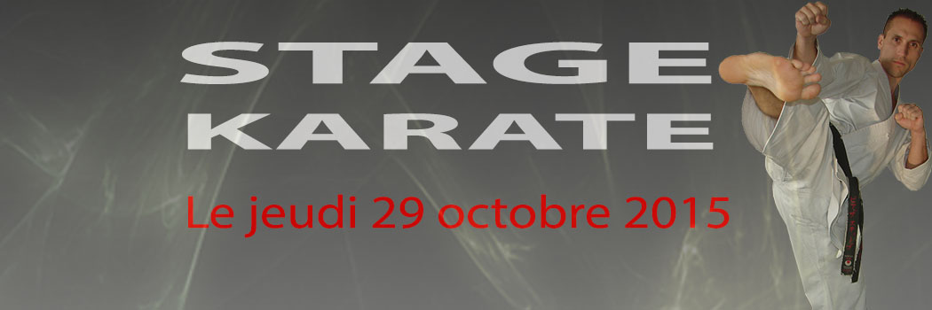 Stage Karaté 29 Octobre 2015