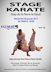 Stage Dojo de St Pierre la Palud