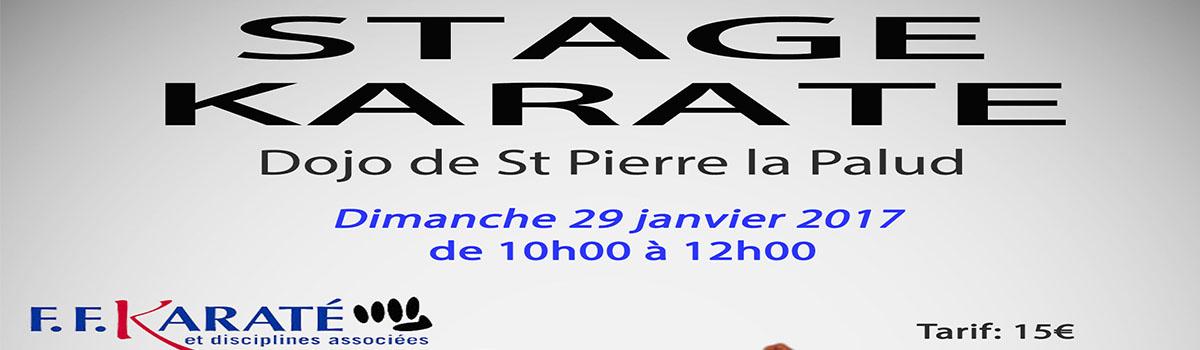 Stage Karaté St Pierre La Palud