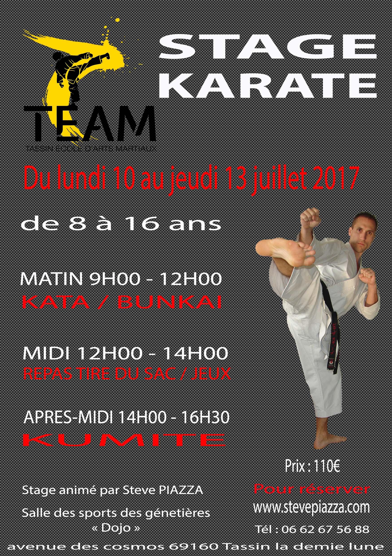 Stage d'été de karaté du 10 au 13 juillet 2017 à Tassin