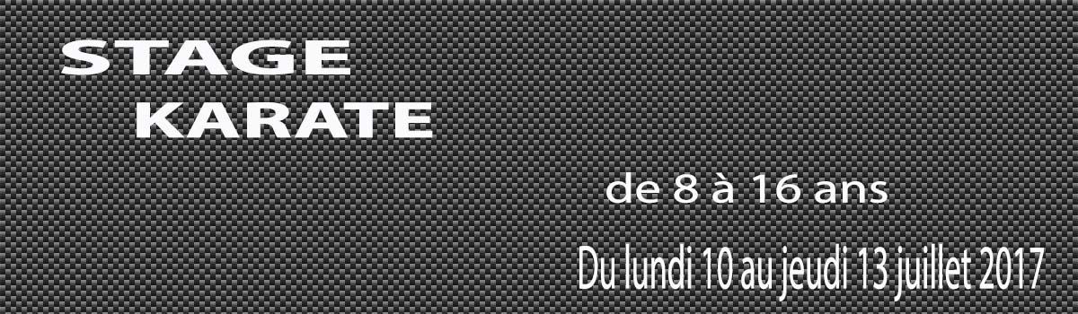 Inscription au stage d'été du 10 au 13 juillet 2017