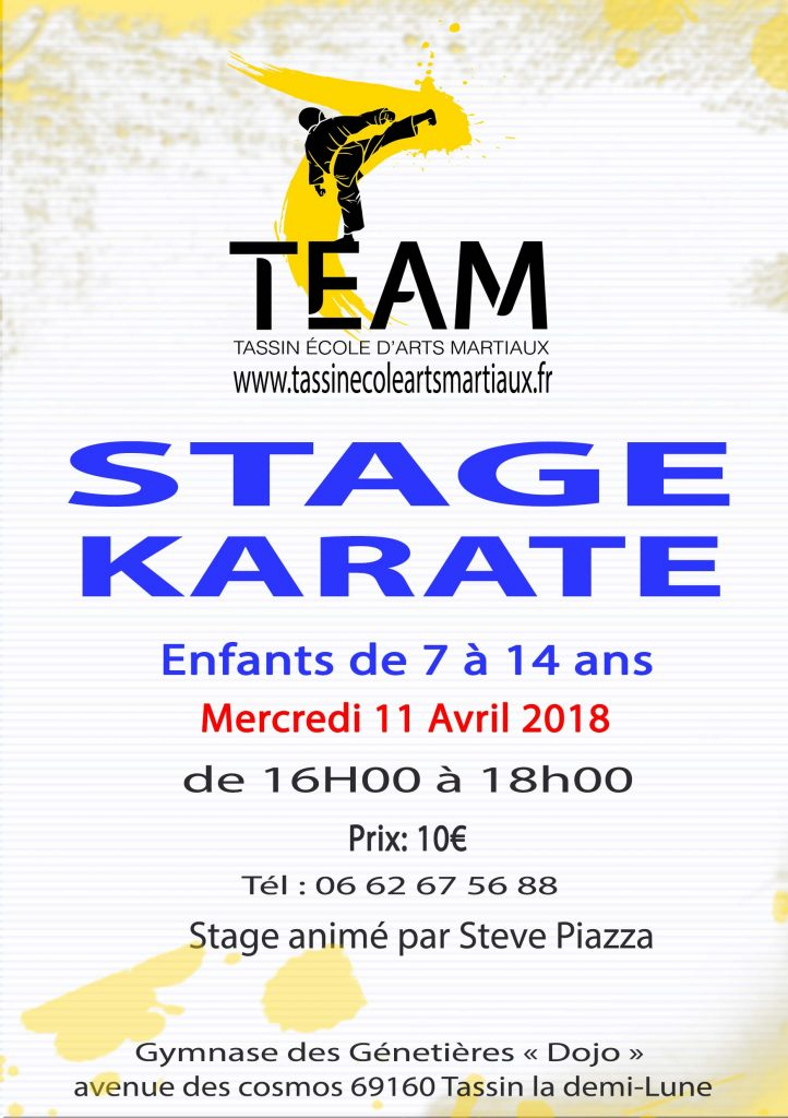 Stage karaté Enfant 11 avril 2018 Tassin
