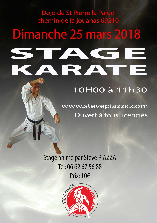 Stage Karaté St Pierre-la-Palud 25 Mars 2018