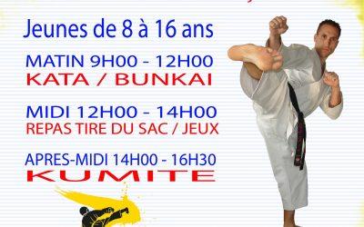 Stage Karaté du 9 au 13 juillet 2018