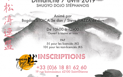 Stage karaté Jks 7 avril 2019