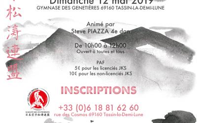 Stage Karaté JKS 12 mai 2019 Tassin