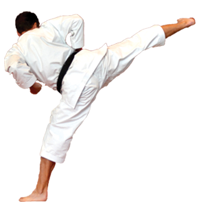 KARATE SHOTOKAN JKS