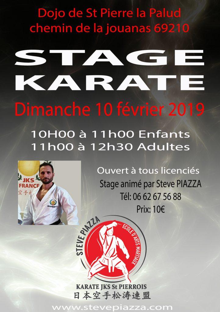 Stage karaté 10 février 2019